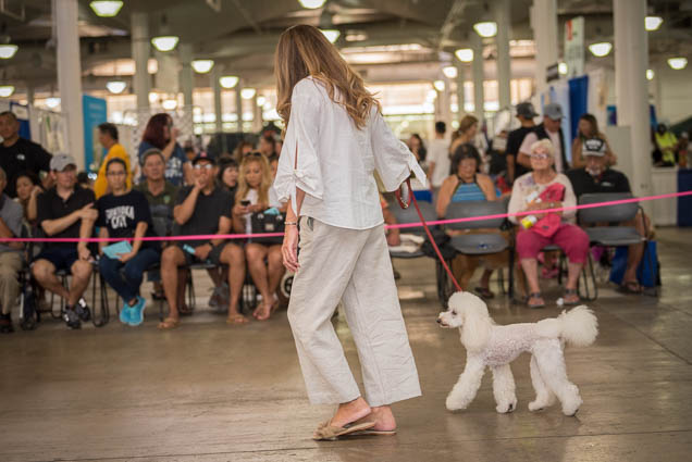 hawaii-pet-expo-2019-honolulu-blaisdell-fokopoint-3366 Hawaii Pet Expo 2019