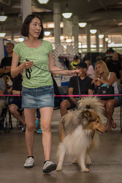 hawaii-pet-expo-2019-honolulu-blaisdell-fokopoint-3424 Hawaii Pet Expo 2019