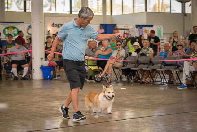 hawaii-pet-expo-2019-honolulu-blaisdell-fokopoint-3446 Hawaii Pet Expo 2019