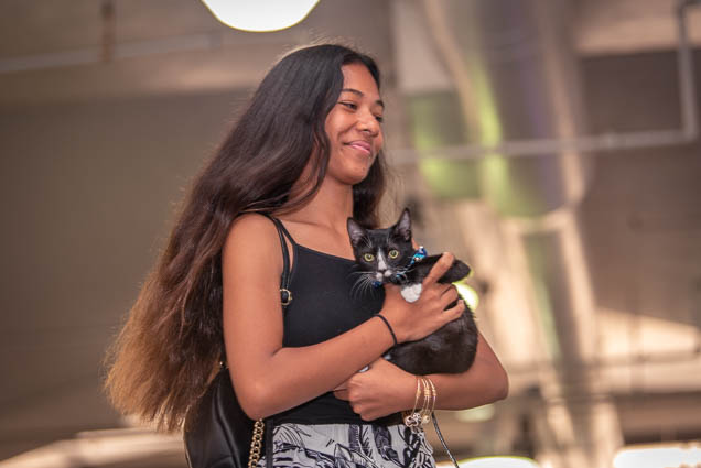 celebrities-pets-fashion-show-2019-honolulu-fokopoint-8605 Celebrities and their Pets Fashion Show 2019