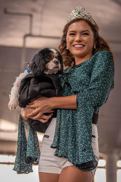 celebrities-pets-fashion-show-2019-honolulu-fokopoint-8731 Celebrities and their Pets Fashion Show 2019