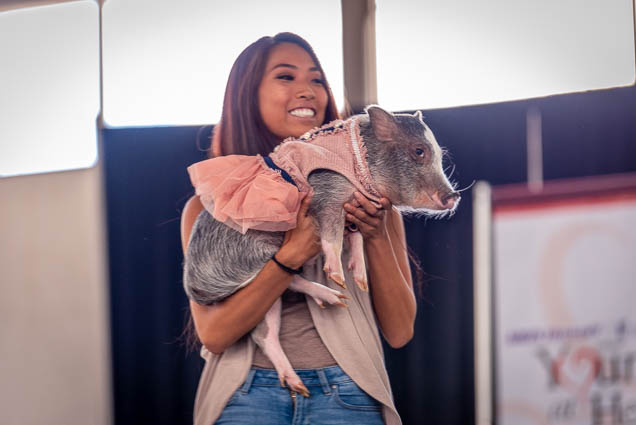 celebrities-pets-fashion-show-2019-honolulu-fokopoint-8870-1 Celebrities and their Pets Fashion Show 2019
