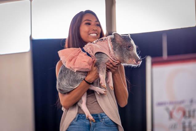 celebrities-pets-fashion-show-2019-honolulu-fokopoint-8870-1 Celebrities and their Pets Fashion Show 2019