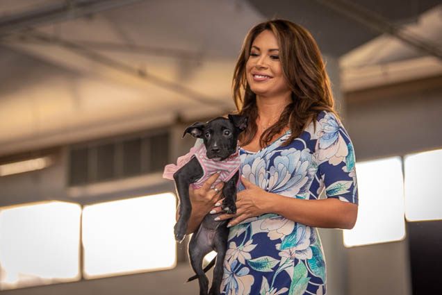 mika-miyashima-celebrities-pets-fashion-show-2019-honolulu-fokopoint-8559 Celebrities and their Pets Fashion Show 2019