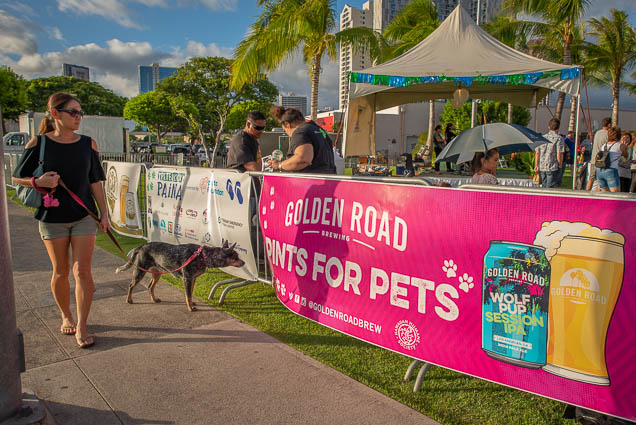 golden-road-pints-pets-petblock-paina-honolulu-2019-fokopoint-1439-1 PetBlock Paina at Victoria Ward Park