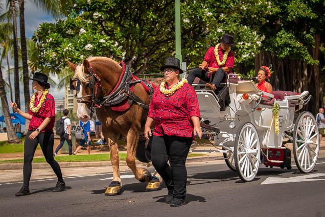 grand-marshall-raiatea-helm-floral-parade-2019-aloha-festivals-fokopoint-honolulu-9459 73rd Annual Floral Parade