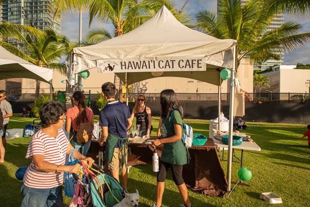 hawaii-cat-cafe-petblock-paina-honolulu-2019-fokopoint-1403 PetBlock Paina at Victoria Ward Park
