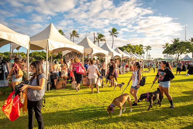makai-park-petblock-paina-honolulu-2019-fokopoint-1416 PetBlock Paina at Victoria Ward Park