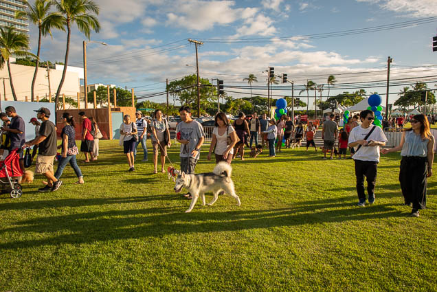 petblock-paina-honolulu-2019-fokopoint-1385 PetBlock Paina at Victoria Ward Park