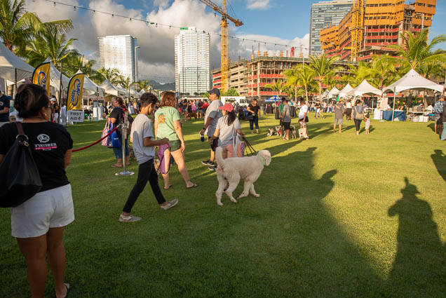 petblock-paina-honolulu-2019-fokopoint-1386 PetBlock Paina at Victoria Ward Park