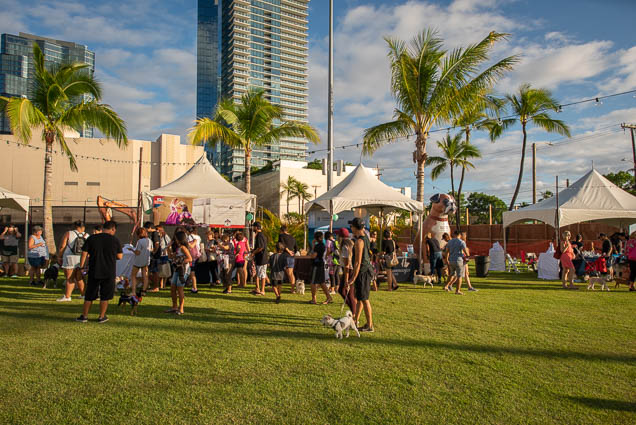 petblock-paina-honolulu-2019-fokopoint-1389 PetBlock Paina at Victoria Ward Park