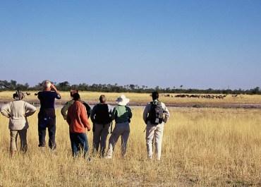 Sunway Botswana Okavango Delta group on guided walk