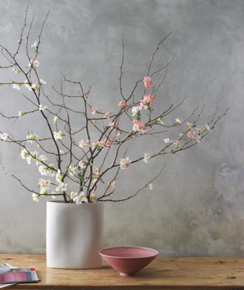 cherry-blossoms-branches-vase