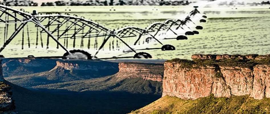 Impactos Ambientais da Irrigação sobre o Meio Ambiente na Chapada Diamantina - Conflitos pelo uso da água na Bacia Hidrográfica do Rio Paraguaçu