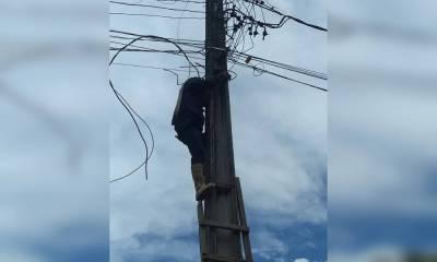 Dupla é flagrada furtando fios da rede elétrica em Guaratuba