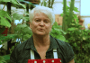 Barronelle Stutzman, dona da Arlene's Flowers em Richland, Washington
