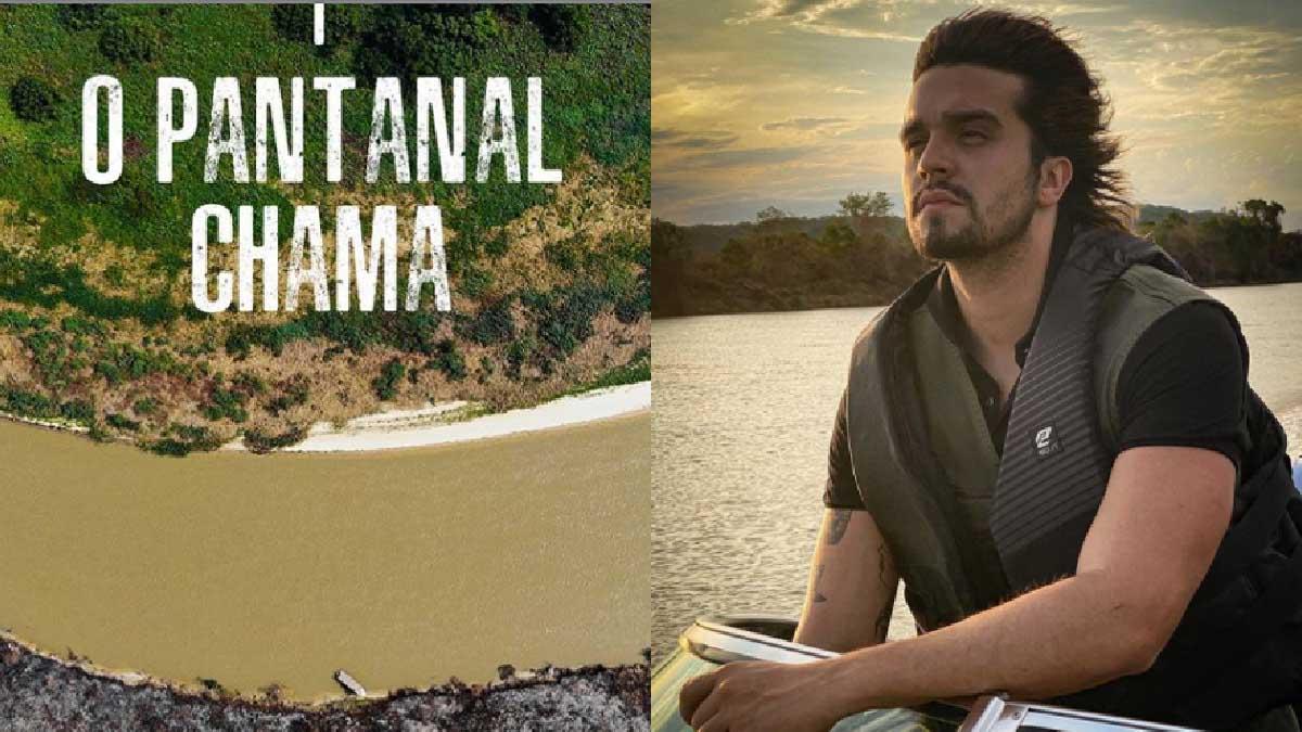 "Read more about the article Câmara aprova homenagem a Luan Santana pelo projeto ""O Pantanal Chama"""