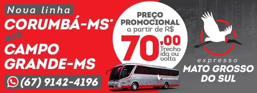 Folha MS