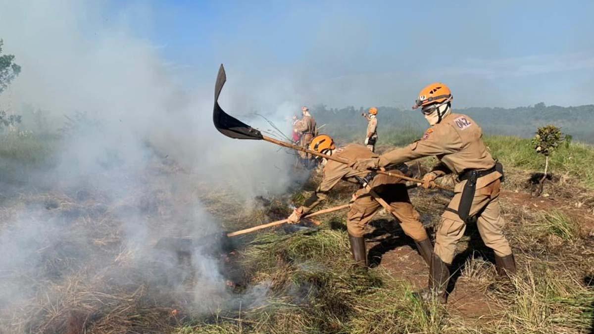 You are currently viewing Bombeiros Militares executam mais de 500 ações de prevenção a incêndios florestais