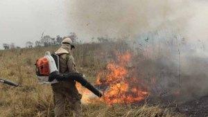 Read more about the article Chegada da chuva no Pantanal elimina os focos de calor; bombeiros monitoram região