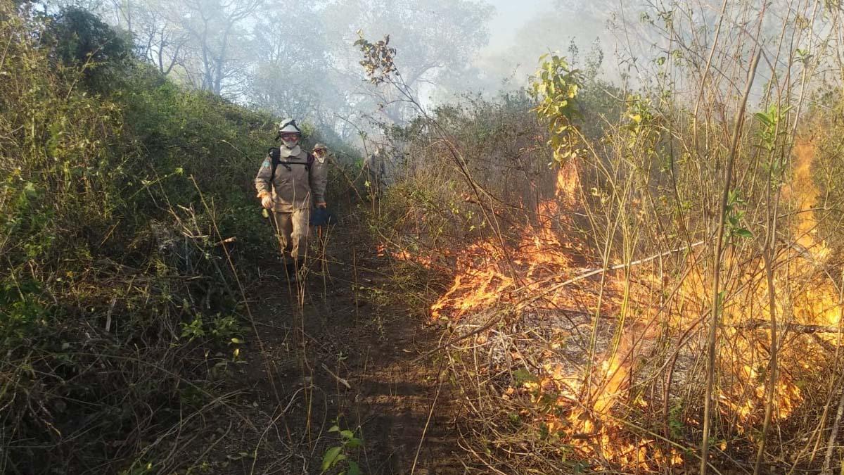 You are currently viewing Bombeiros se mobilizam para combater novos focos de incêndio no Paiaguás