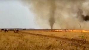 """Read more about the article Vídeo   """"Redemoinho de fogo"""" cerca bombeiros que combatem queimadas no Pantanal"""