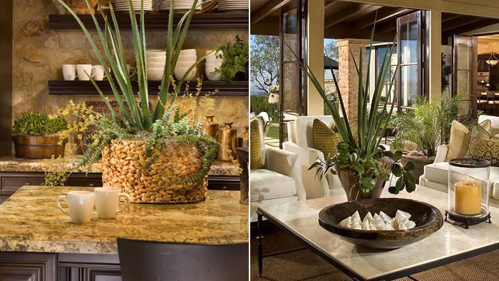 The Foliage Group Interior Landscaping Orange County