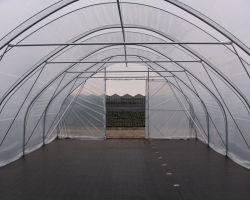 Tunnelfolie