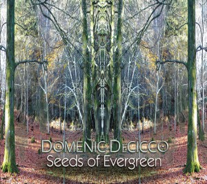 Seeds Of Evergreen