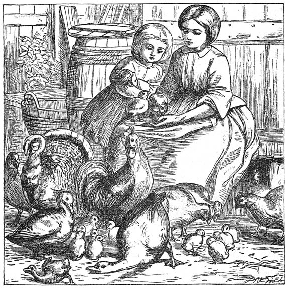 From 'Andersens Sproken en vertellingen' by Hans Christian Andersen, Titia van der Tuuk (ed.) and Simon Jacob Andriessen (trans.). Gebroeders E. & M. Cohen, Nijmegen - Arnhem. Illustrated by Alfred Walter Bayes (1832-1909) and engraved by the Dalziel Brothers (Edward Daziel, 1817-1905; George Daziel, 1815-1902).