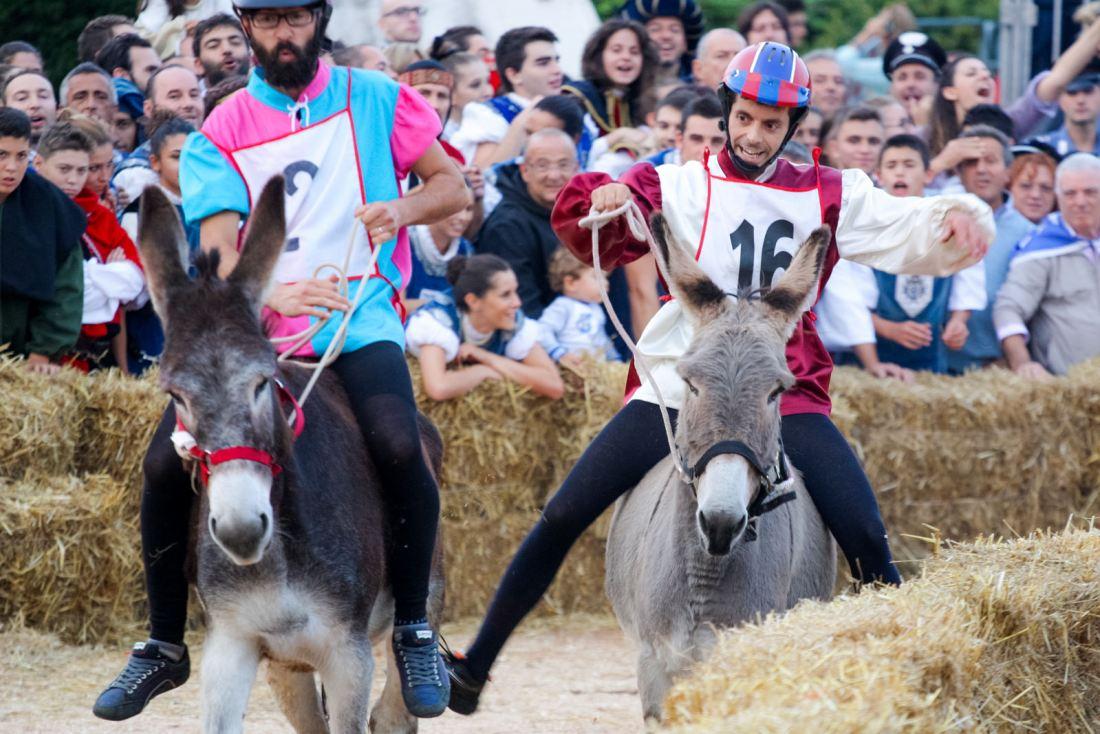 Palio degli Asini in Action © Giorgio Montersino via Foter.com / CC BY-SA