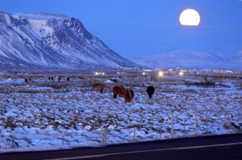 December in Selfoss, Iceland © Christian Bickel https://commons.wikimedia.org/w/index.php?curid=8869261