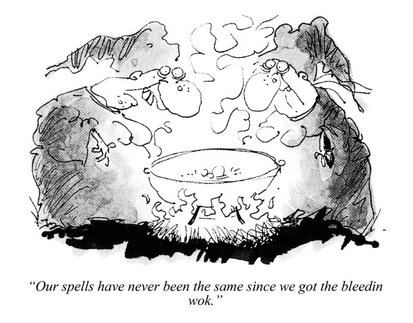 """Our spells have never been the same since we got the bleedin wok."" © Punch Ltd"