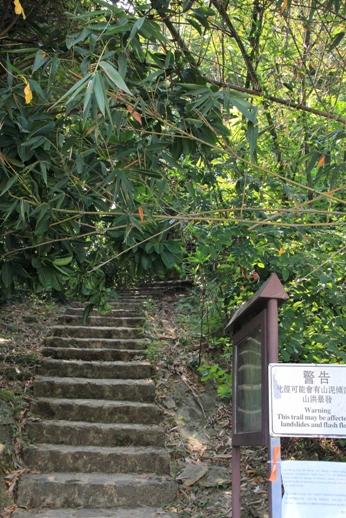 經過村屋後不久,便是登山的山徑
