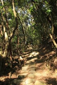 初段山路旬有樹木遮蔭