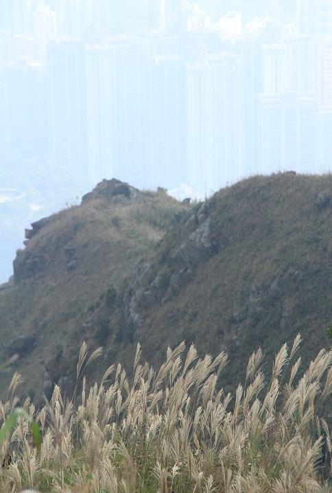 飛鵝山南崖