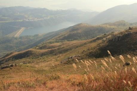 山下的愉景灣水塘