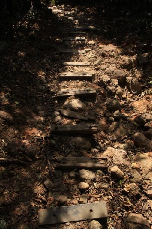 沿梯級下山接回布力徑