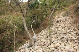 初段的石頭極為鬆散