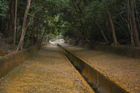 引水道是柏鰂石澗的入口
