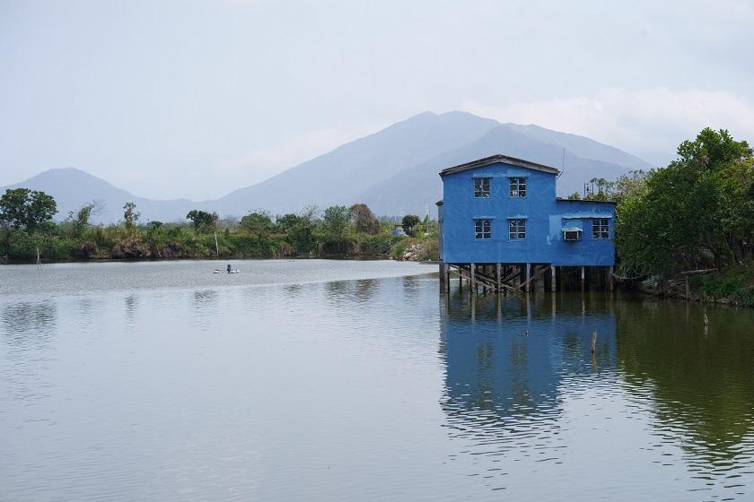 純樸的魚塘小屋