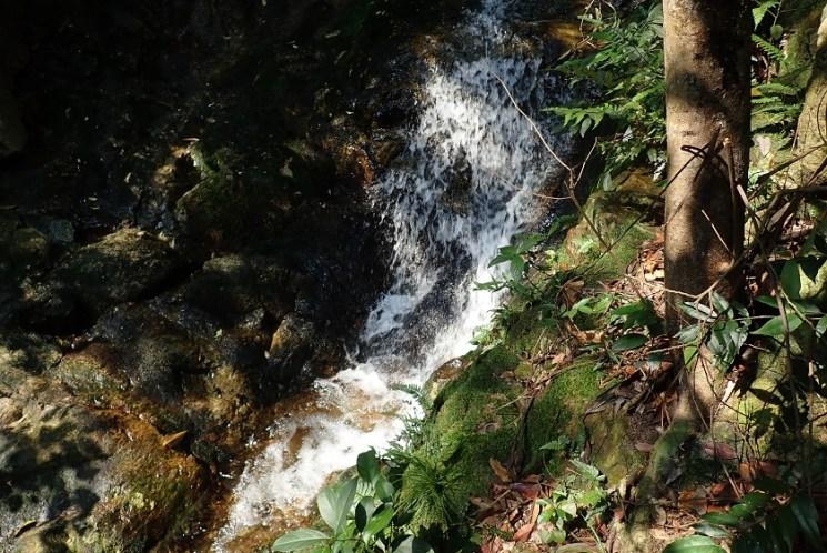 在濕滑佈滿菁苔的岩坡坎過