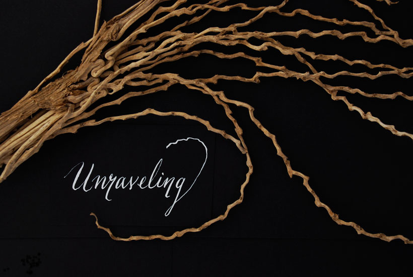 Unraveled Curl © Yvonne Cornell 2013