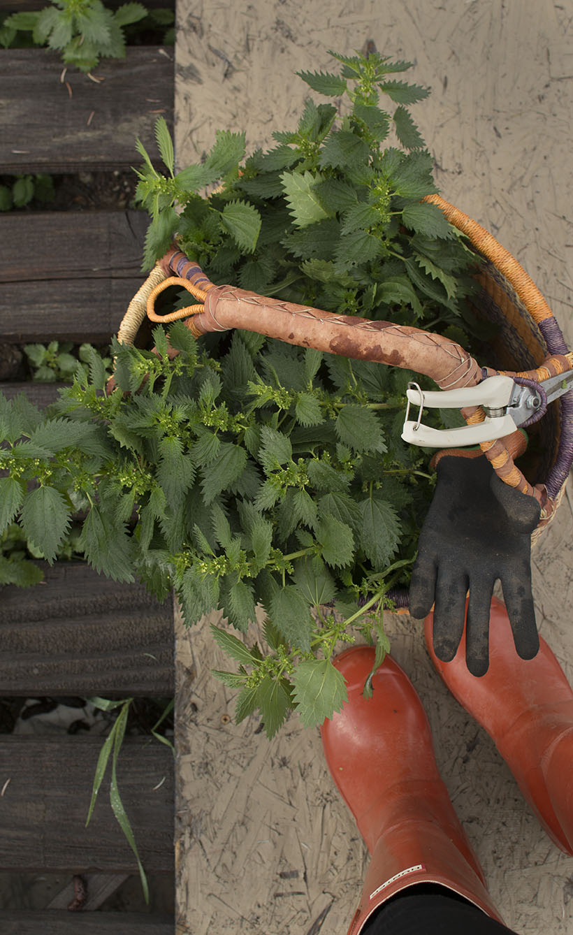 Nettle Basket and Boots