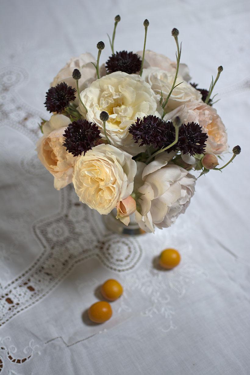 Close-Up Roses