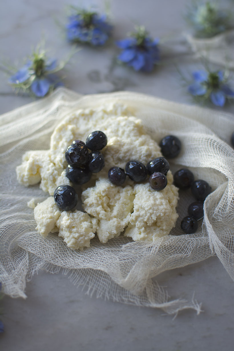 Ricotta on Cheesecloth