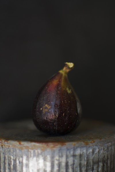 The Fig