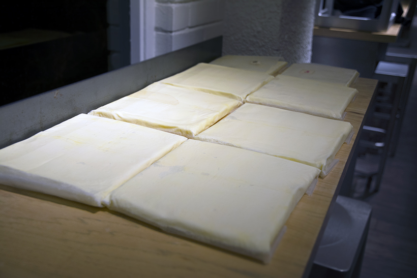 Dough Rising in Darkness