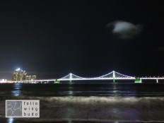 Busan Skyline & Gwangan Bridge