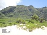 Mokule'ia Beach